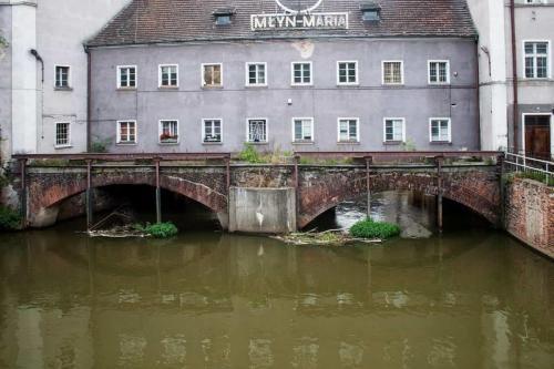 wroclaw-mlyn-maria